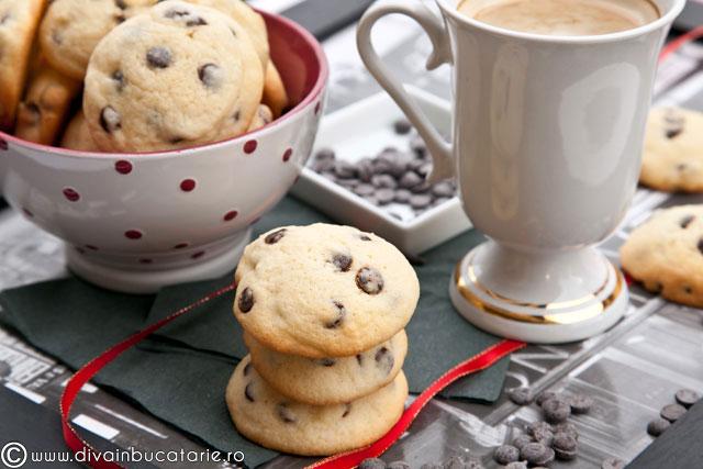 biscuiti-cu-fugi-de-ciocolata-01
