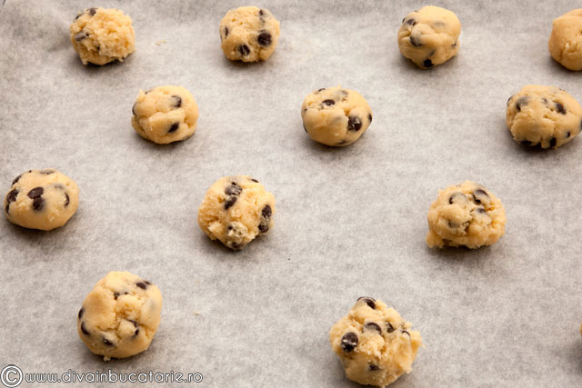 biscuiti-cu-fugi-de-ciocolata-3