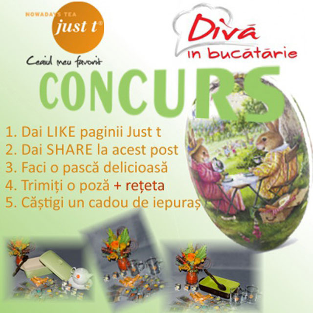 Banner_Concurs-Diva-PAste