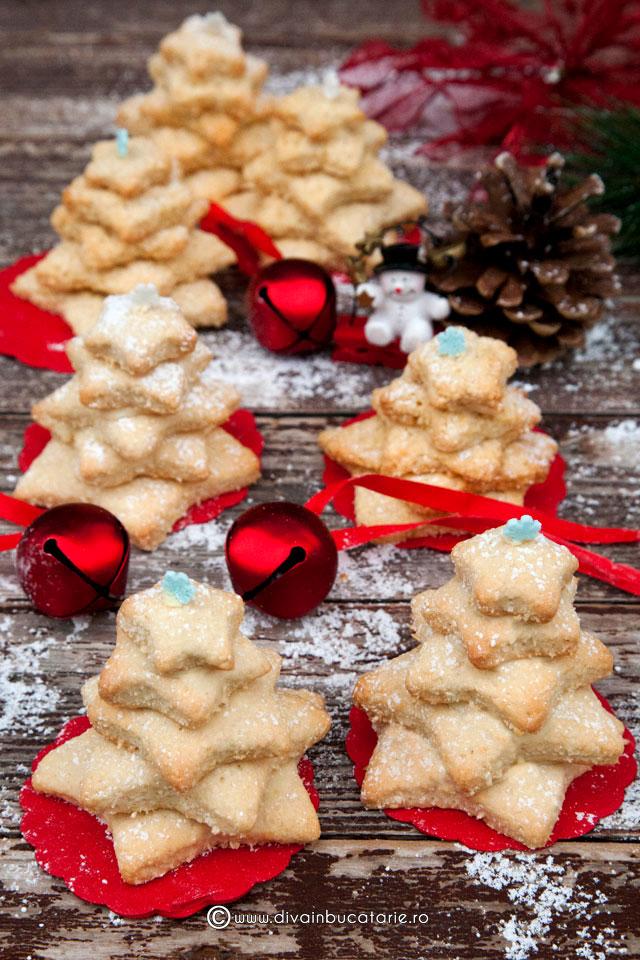 bradut-din-biscuiti-cu-nuca-de-cocos-5