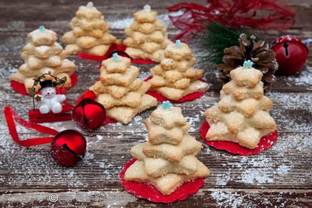 braduti-din-biscuiti-cu-nuca-de-cocos