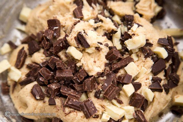 biscuiti-cu-3-ciocolate-4
