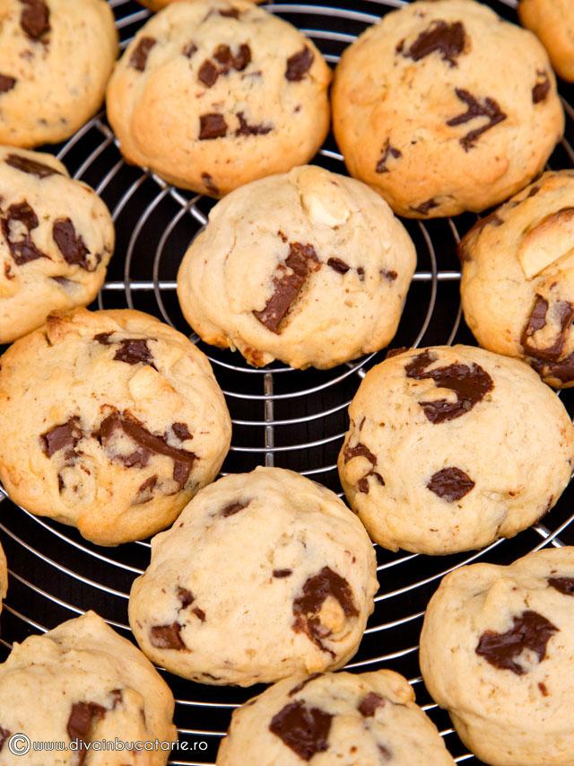 biscuiti-cu-3-ciocolate-6