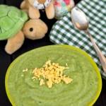 Piure de spanac cu broccoli pentru bebelusi