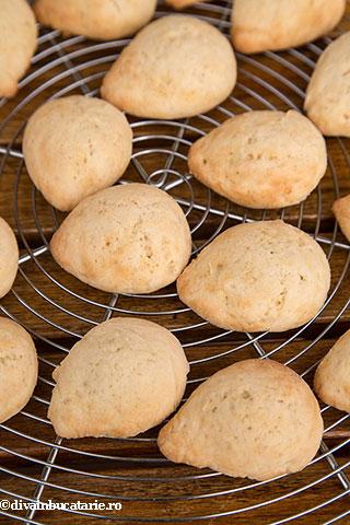 biscuiti-arici-5