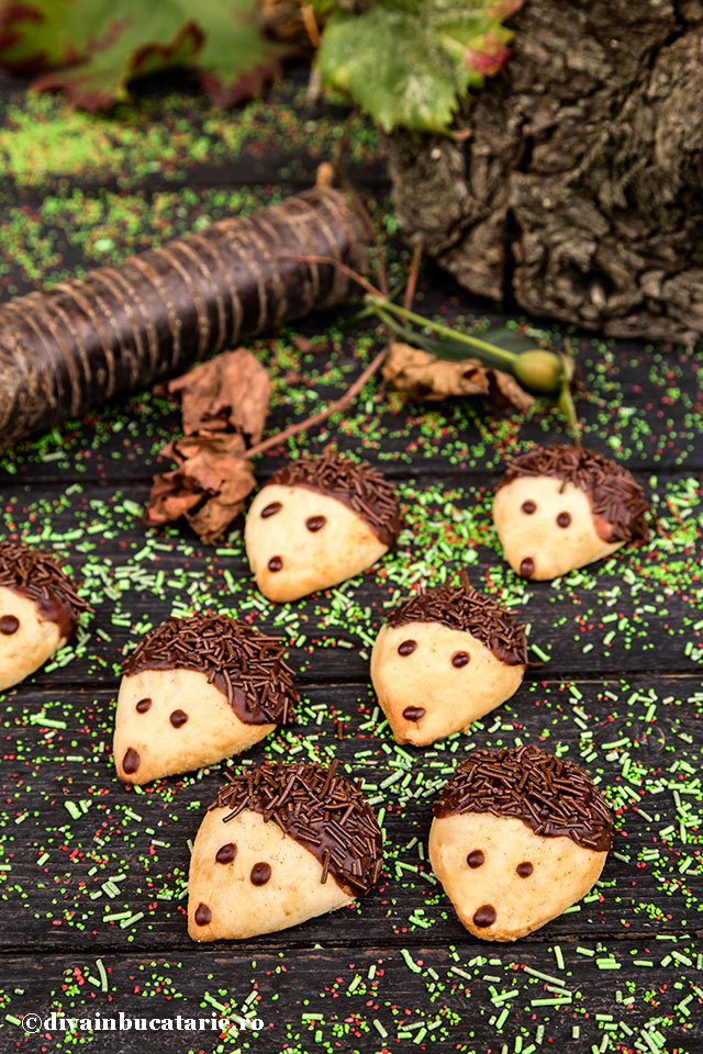 biscuiti-arici-a