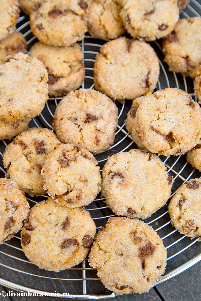 biscuiti-deliciosi-cu-unt-de-arahide-si-ciocolata-b