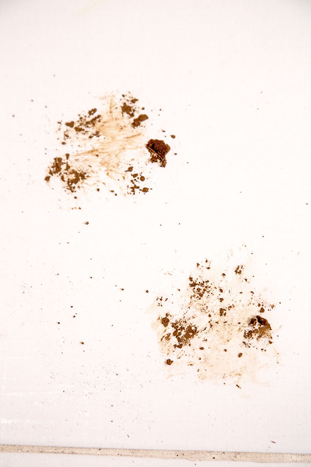 detergenti-pardoseli-asevi-2