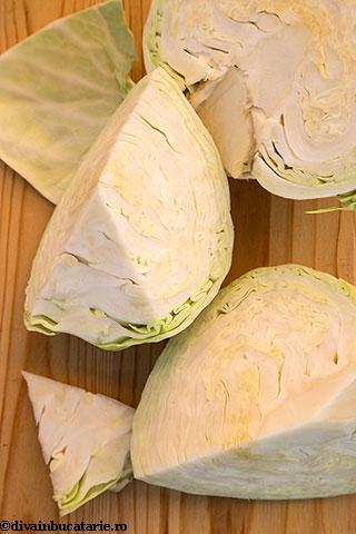 salata-coleslaw-1