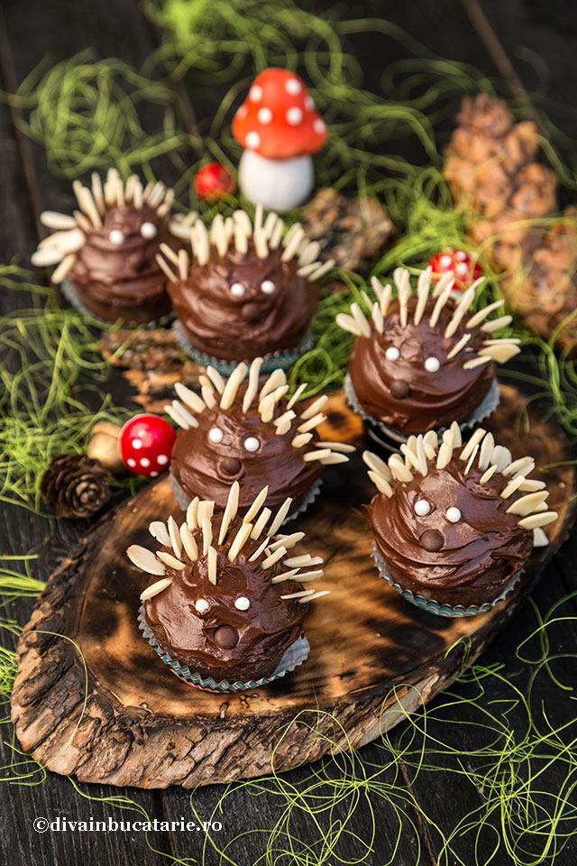 cupcakes-ciocolata-arici